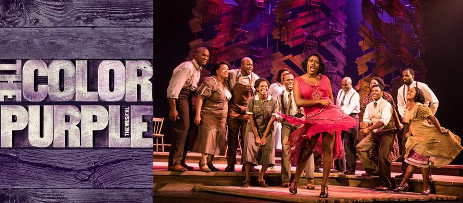 The Color Purple at Oriental Theatre