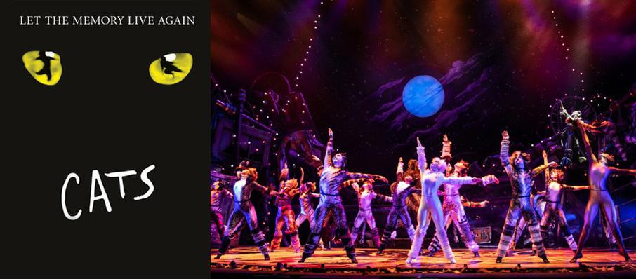 Cats at James M. Nederlander Theatre