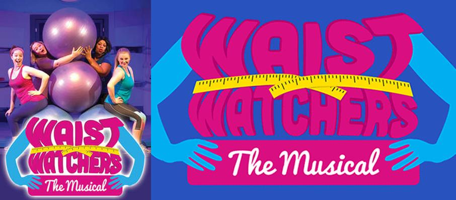Waistwatchers The Musical at Royal George Cabaret Theater