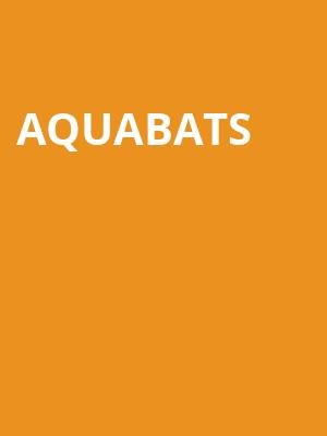 Aquabats at Metro Smart Bar