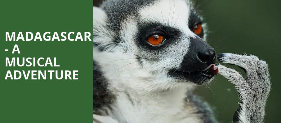 Madagascar A Musical Adventure, Marriott Theatre, Chicago