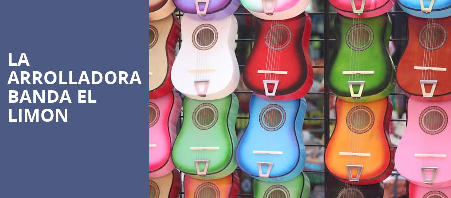 LA Arrolladora Banda El Limon, Rosemont Theater, Chicago