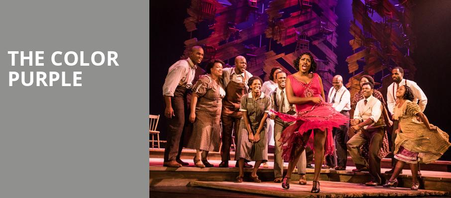 The Color Purple, Drury Lane Theatre Oakbrook Terrace, Chicago