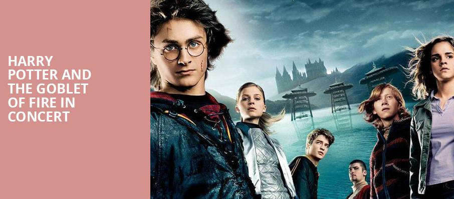 Harry Potter and the Goblet of Fire in Concert, Symphony Center Orchestra Hall, Chicago