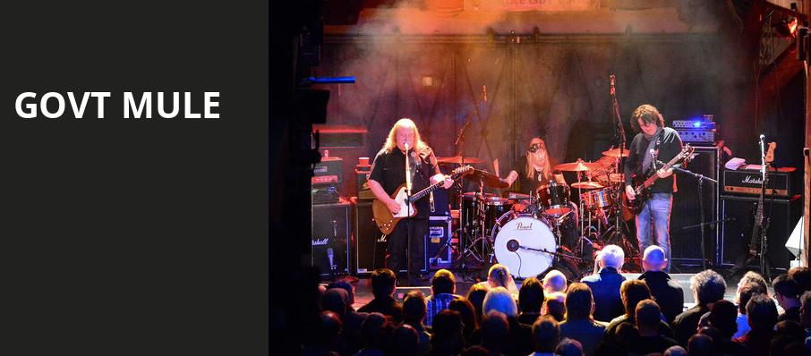 Govt Mule, Riviera Theater, Chicago